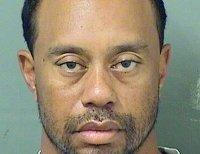 Tiger Woods' 2017 mugshot
