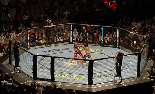 Longshot of the UFC Octagon