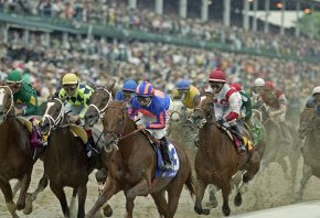 Horses contesting the Kentucky Derby.
