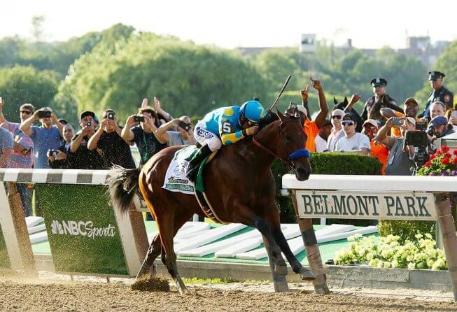 American Pharoah Belmont
