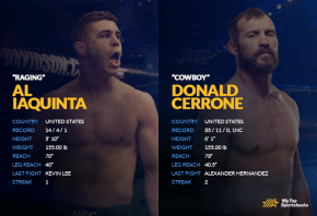 Al Iaquinta vs Donald Cerrone