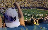 Michigan Wolverines fan