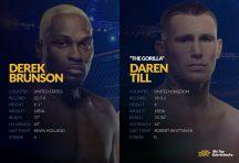 UFC Vegas 36: Brunson vs. Till Betting Odds & Picks