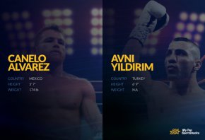 alvarez vs yildirim betting picks