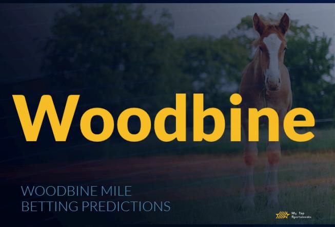 Woodbine Mile Betting Predictions